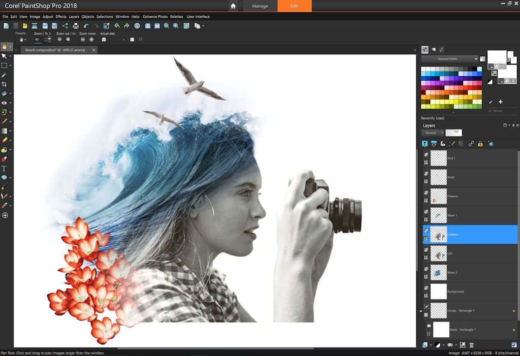 Download PaintShop Pro 2018 Offline Installers Tool